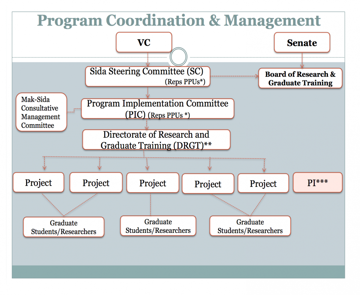 Program Organisation Structure